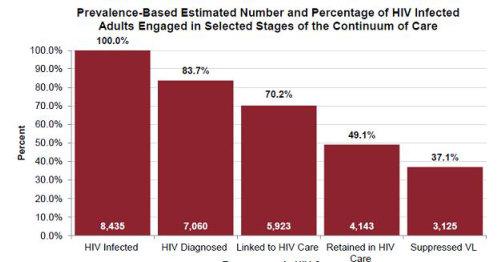 HIV Report Chart